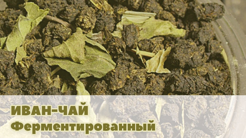 Ферментированный Иван-чай купить в Украине